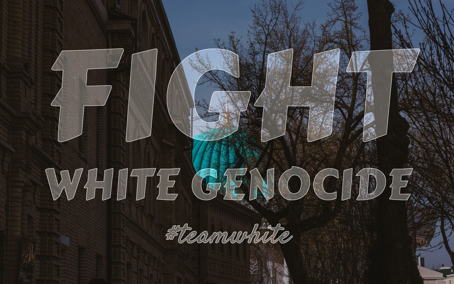 teamwhite_image